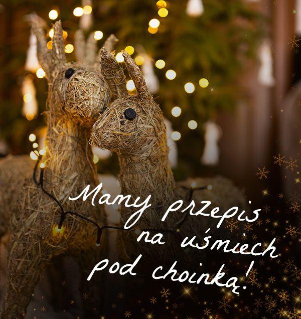 Nie daj się wyprzedzić reniferom Świętego Mikołaja! Przygotuj wyjątkowy prezent świąteczny już dziś. Mamy coś co sprawi radość niejednemu mateiście!                                                                       | ZielonyTarg.pl