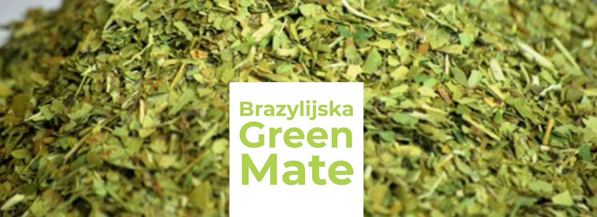 Brazylijska świeżość yerba mate green to doceniana cecha wśród mateistów. Sprawdź, dlaczego tak jest!           | ZielonyTarg.pl