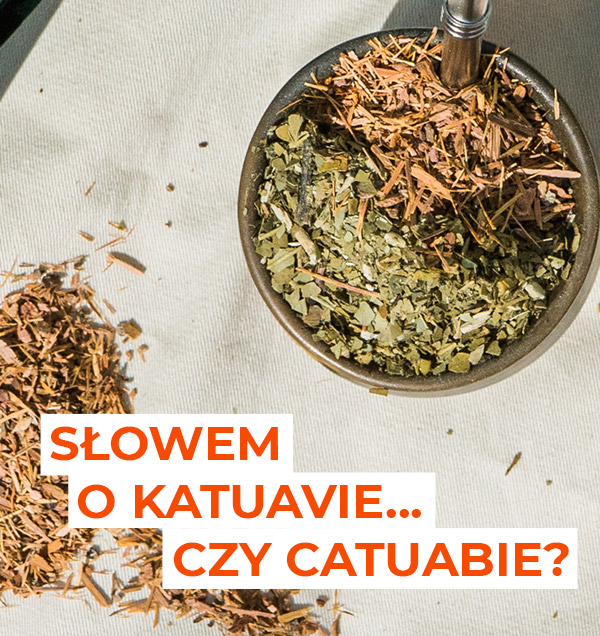 Poznaj doskonałe właściwości katuavy w naparze yerba mate