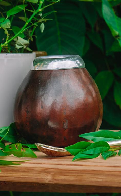 Tykwa - Calabaza natural wielka czarna   500ml   naczynie do yerba mate